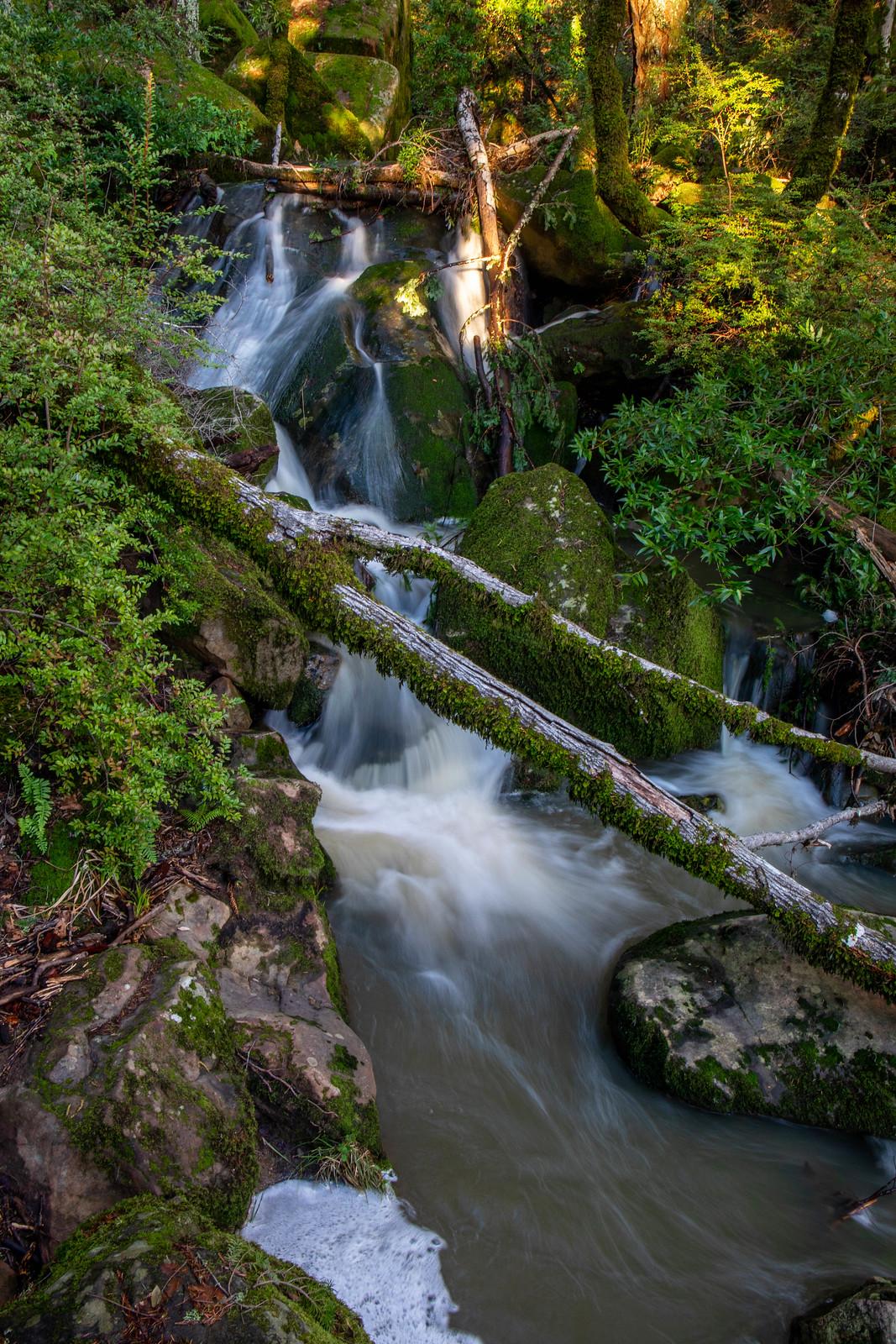 02.10. Long Ridge: Peters Creek Falls