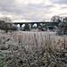 Nine Arches, Newton le Willows