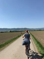 Biking Colmar to Eguisheim - Photo of Biltzheim