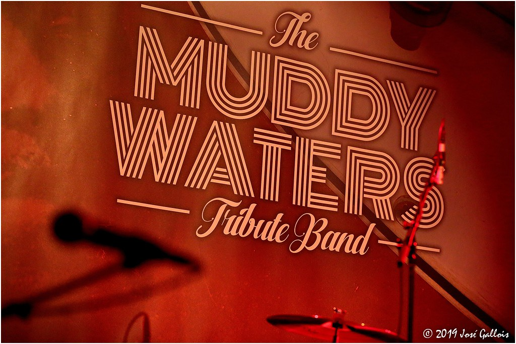 The Muddy Waters Tribute Band