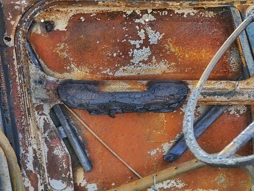 """Door of the Burned Car Türe des verbrannten Autos Fahrerseite innen - Citroën Acadiane """"Biedermann & die Brandstifter"""" Volkstheater, Werbekampagne Advertising Campaign: Demner, Merlicek & Bergmann"""