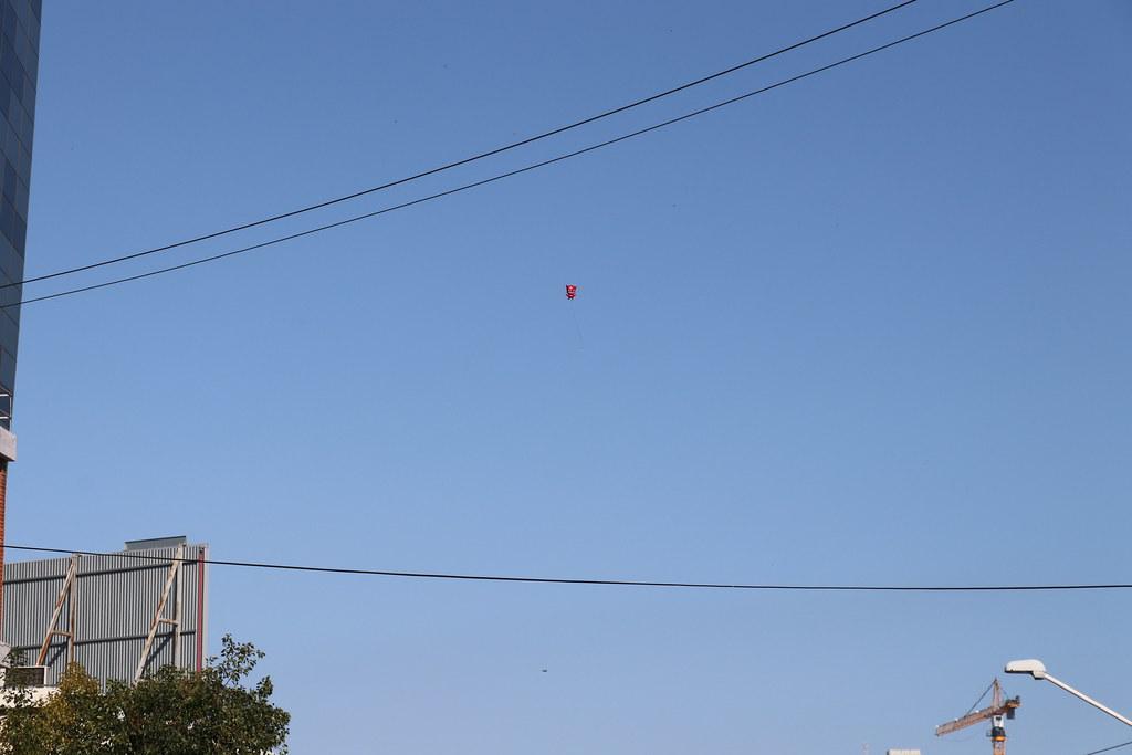 Flyaway Owlette