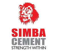 Financial Accountant Job at Simba Cement Plc / Tanga Cement