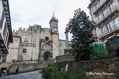 Catedral de San Martiño de Ourense, Orense, Galicia, España.
