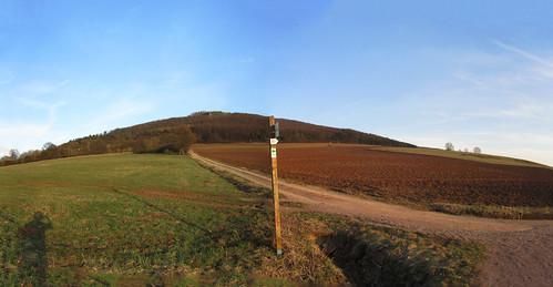 20110323 0210 491 Jakobus Weg Hügel Feld Wald Wiese_P01