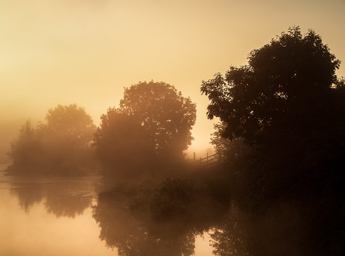 dorsetuk unitedkingdom gb riverstour rowoftrees orangesunrise summer nature beautyinnature anthonywhitesphotography