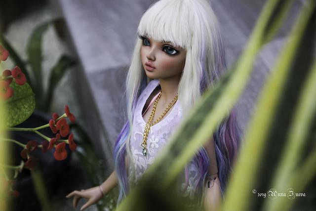 Tropical Chloe