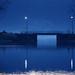 Bleu comme la nuit by Catherine Reznitchenko