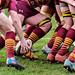 Rugby-1052169.jpg
