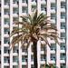 Un hotel del Levante