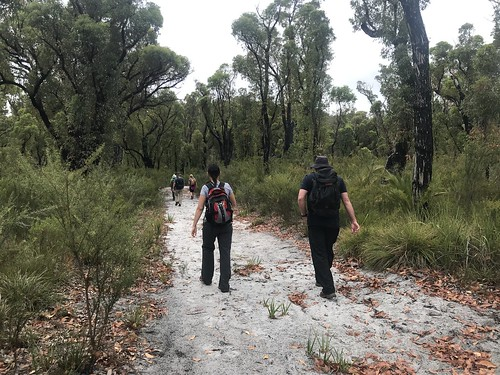 Northcliffe to Walpole March 7th 2019