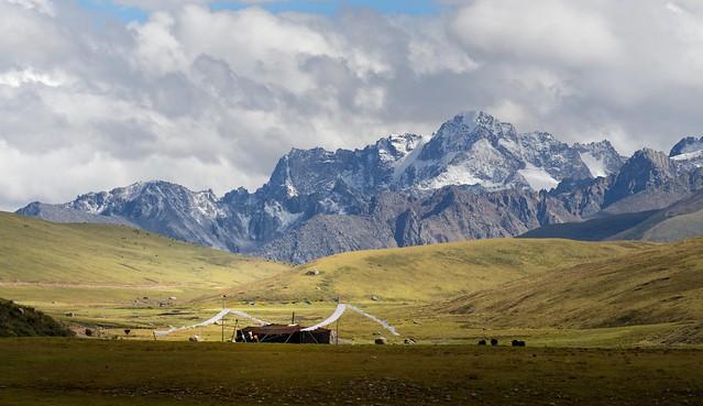 The distinguish Nomad black yak-hair tent, Tibet 2014