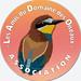 Logo LADDDO V2019