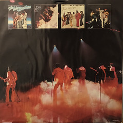 THE ISLEY BROTHERS:GO FOR YOUR GUNS(INNER 2)