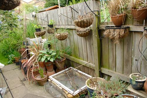 090605_Garden_Replanting_04