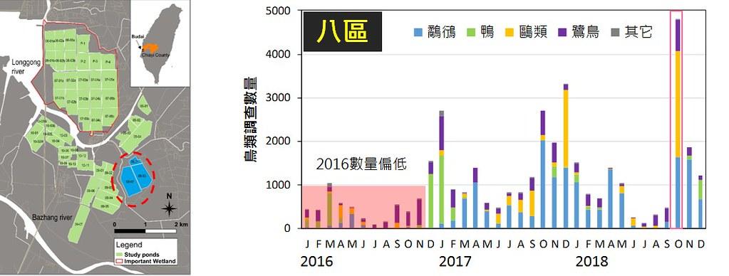 水鳥數量會隨季節變化,特生中心研究發現八區在2018年十月發生不尋常的飆高,認為這與光電施工的水位變化有關。圖表來源:農委會特生中心