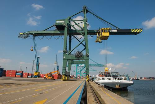 Sea Invest Antwerp Container Terminal_DVL3544