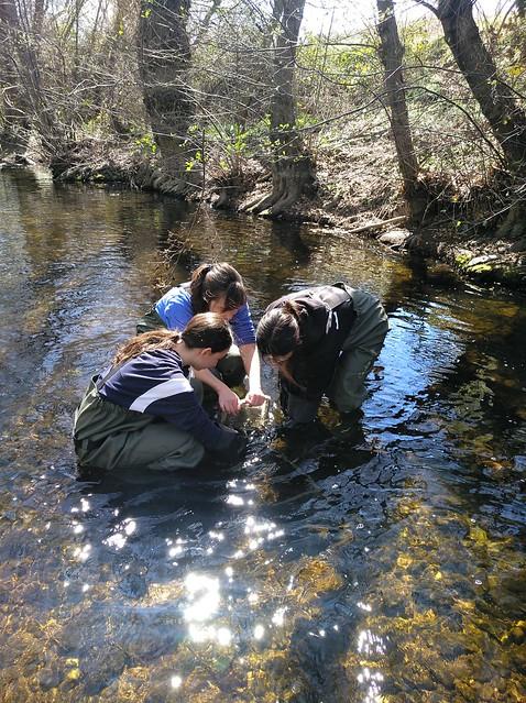 Analizando el estado de las aguas del río Guadalix con el Liceo Francés de Madrid