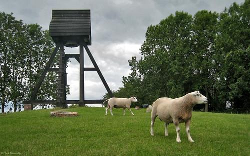 Groningen: Oldekerk belfry