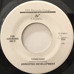 ARRESTED DEVELOPMENT:TENNESSEE(LABEL SIDE-A)