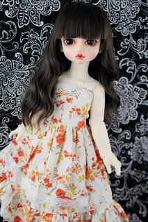 Baby Delf Rose