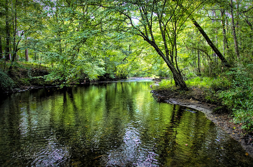 The Little Cahaba River