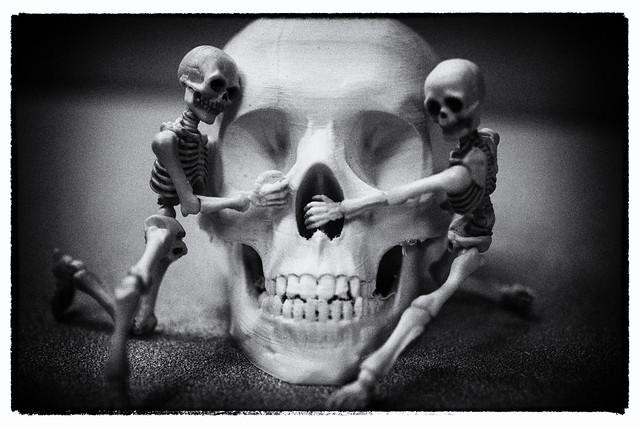 Skullduggery bw
