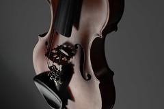 Geige/Violine – Viola/Bratsche