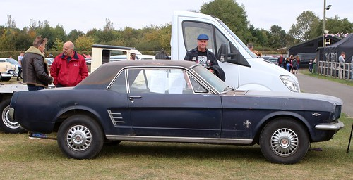 Ford Mustang 289 (1)
