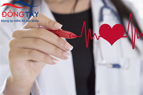 4 điểm khác biệt giữa trái tim phụ nữ và trái tim đàn ông