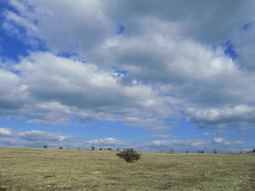 20110320 0207 269 Jakobus Bäume Feld Weite Wolken
