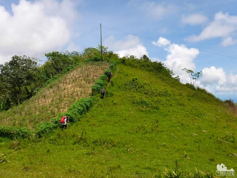 Lovely hill