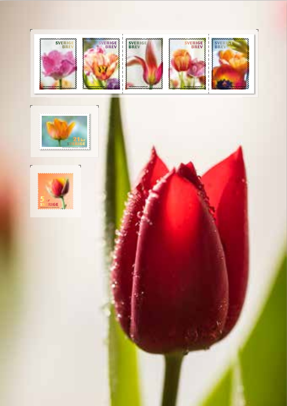 Sweden - Tulips (January 10, 2019) PostNord Sverige AB