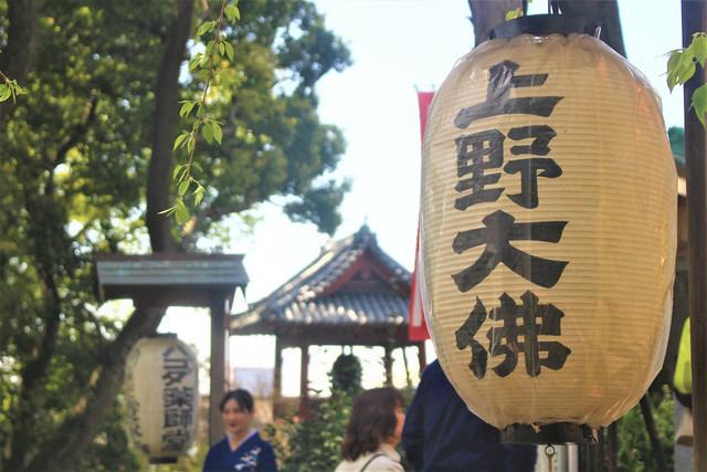 uenodaibutsu037