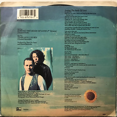 TEARS FOR FEARS:SOWING THE SEEDS OF LOVE(JACKET B)
