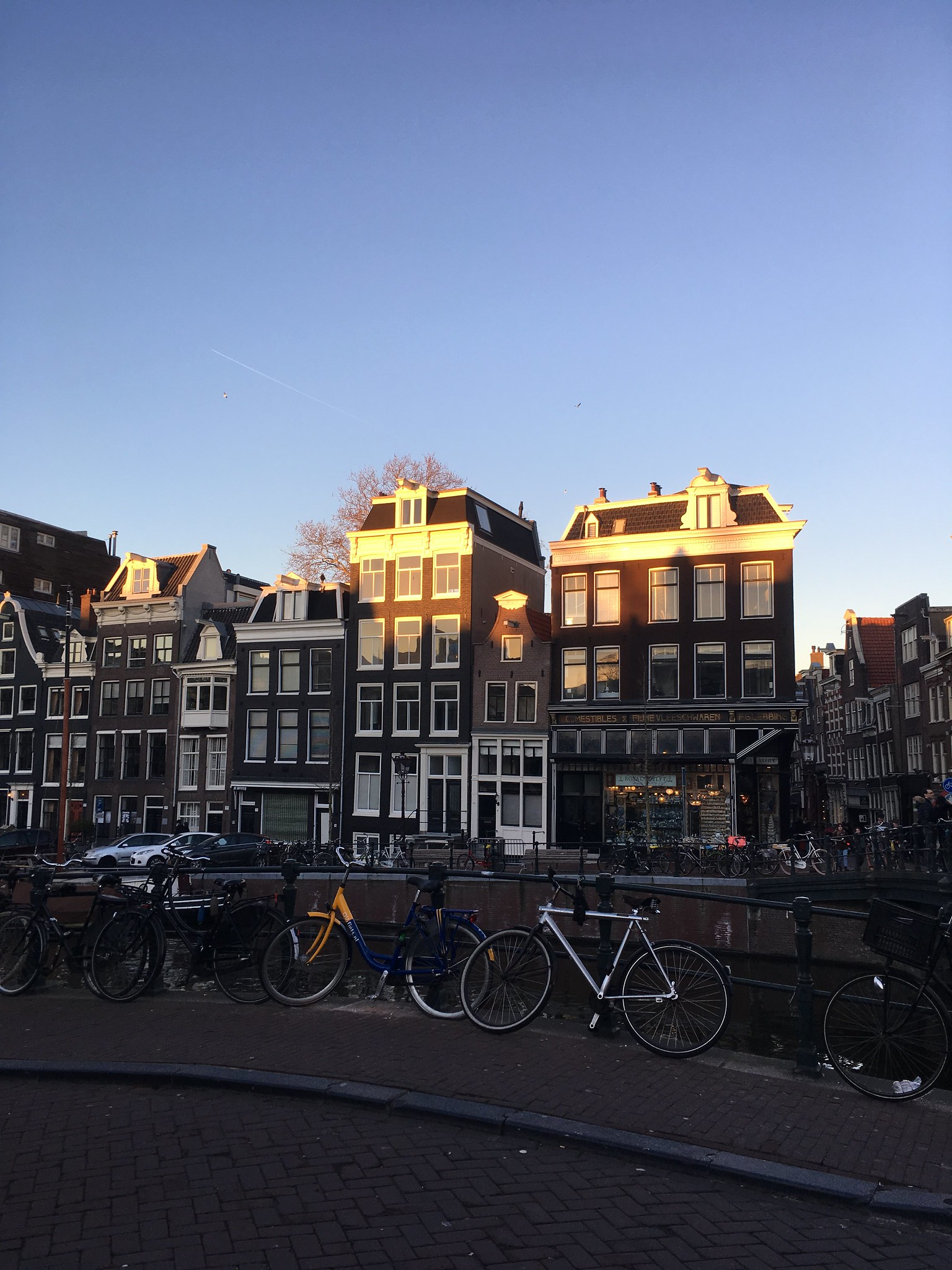 Fun on fiets: An update from The Hague
