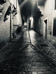 Castres, la nuit. - Photo of Laboulbène