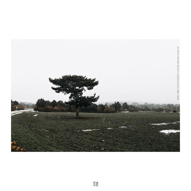 ETR PHOTOGRAPHY  ERSİN TÜRK - ETR0253