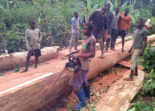 Mbole bridge work_is it straight? copy