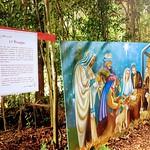 Caminho da Natividade