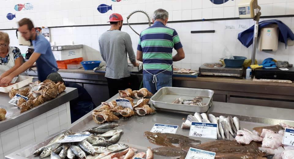 Bezienswaardigheden Olhão, Portugal: Vismarkt | Mooistestedentrips.nl