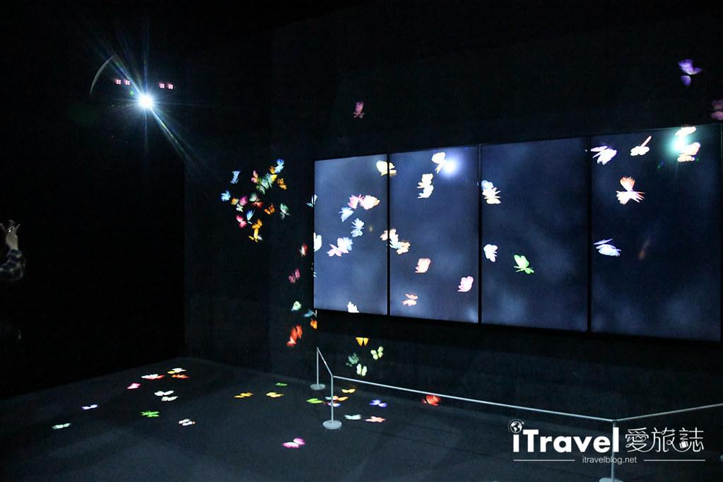 东京艺术展览 teamLab Borderless (13)