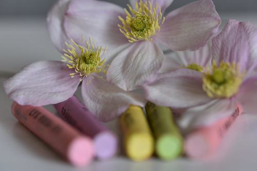 Macro Mondays - Pastel - in explore