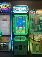Flappy Bird arcade game
