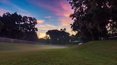 Backyard Fog Sunrise