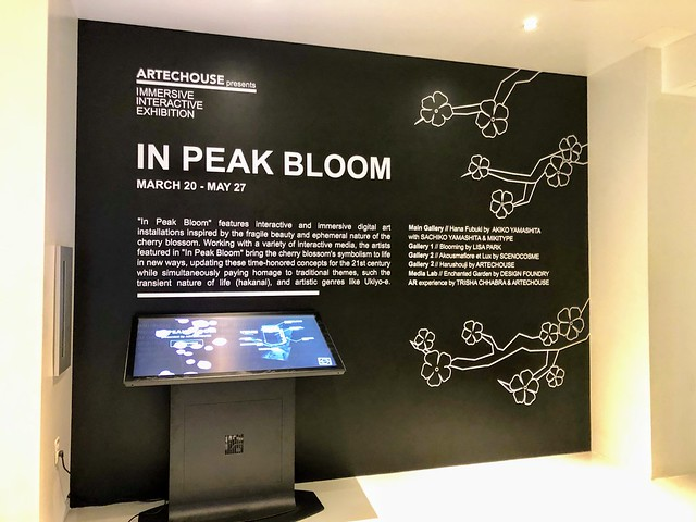 "Photo:""In Peak Bloom"" @artechouse By anokarina"