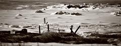 West Pond Trail - Winter