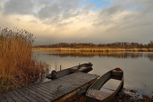 Schelldorfer See