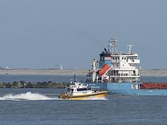 Pilots Draco - Maasmond - Port of Rotterdam