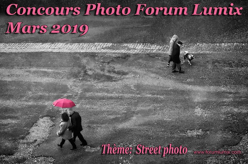 "Concours mars 2019 ""STREET PHOTO"" 47260609382_87b776f732_c"